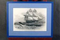 Серия гравюр в деревянных рамах с паспарту