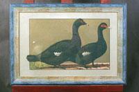 Антикварная акварель с птицами в сине-золотом багете